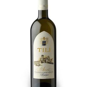 Tili-Vini_Assisi-Assisi-bianco