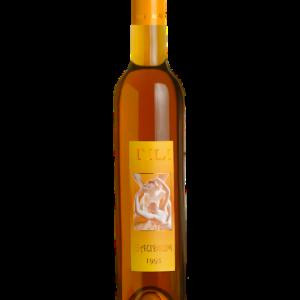 Tili Vini_Assisi - Gaudium