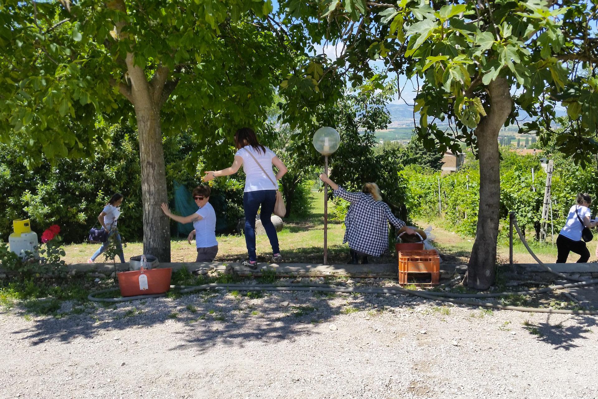 Degustazione Assisi Tili Vini - Caccia al tesoro francescano 3