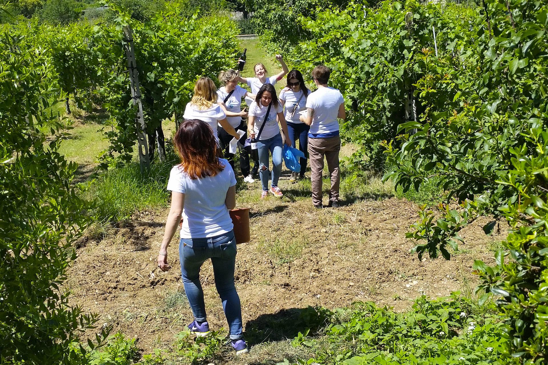 Degustazione Assisi Tili Vini - Caccia al tesoro francescano 6