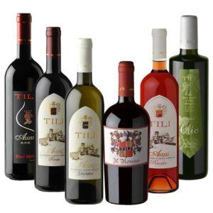Tili Vini Assisi - Gemischte Bio Box-min